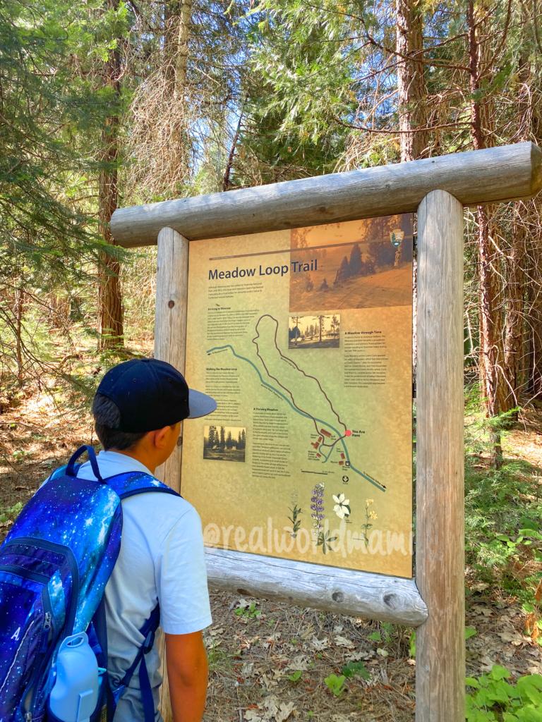 Meadow Loop Trail