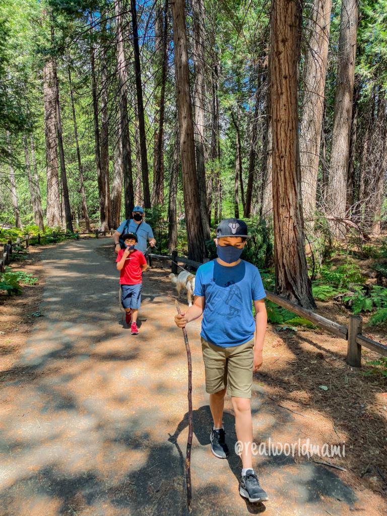 Visit Yosemite after COVID