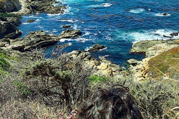 Plan your Trip to Big Sur